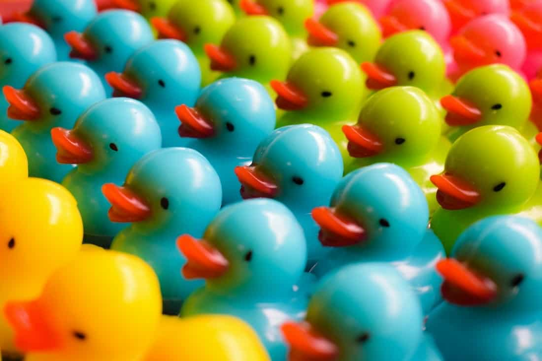 http://staging.mastermortgagebrokersydney.com.au - plastic coloured ducks lined up in rows - representing ducks in a row